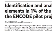 Publication:  Identification and analysis of functional elements in 1% of the human genome by the ENCODE pilot project