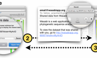 Research topic: Wasabi -- a web–based platform for evolutionary sequence analysis
